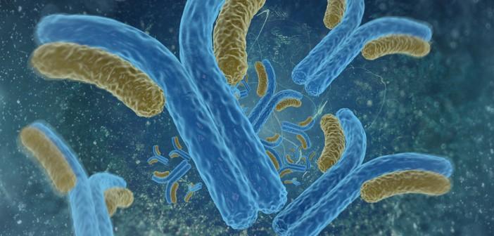 Antibodies_Featured