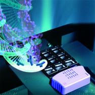 Molecular DNA with Bioc#D97