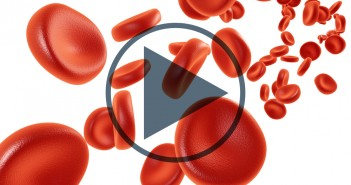 Red blood cells_Video_Featured