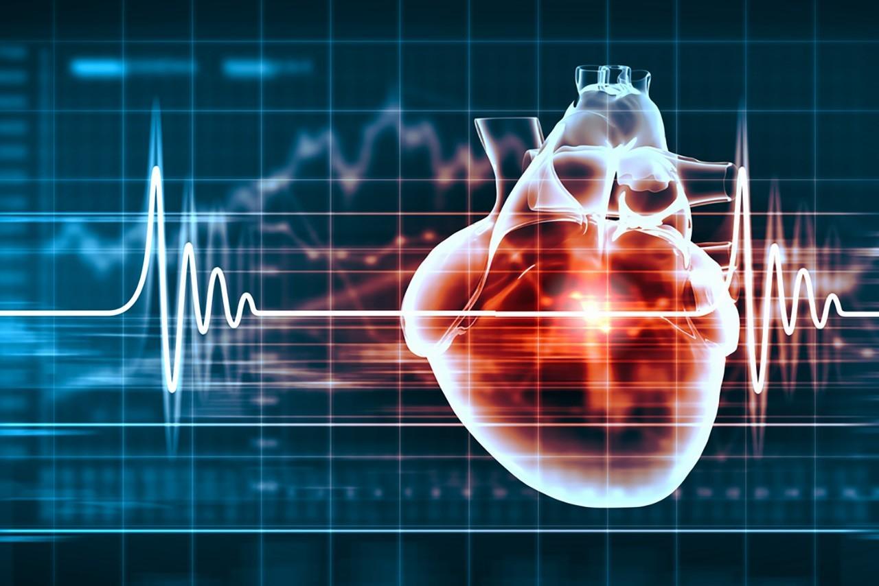 Cardiovascular Drug Determination In Bioanalysis An