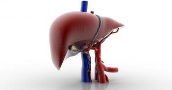 liver-85601176