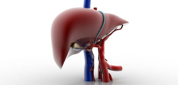 Definitive profiling of plasma bile acids as potential biomarkers for human liver diseases using UPLC–HRMS
