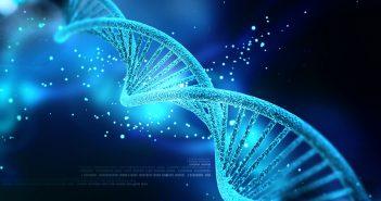 DNA biomarker