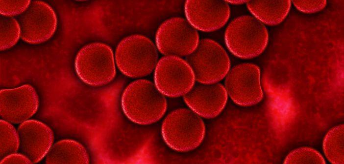 blood-75302