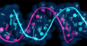 Spotlight survey on oligonucleotides