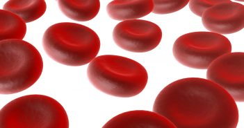 Red blood cells 2