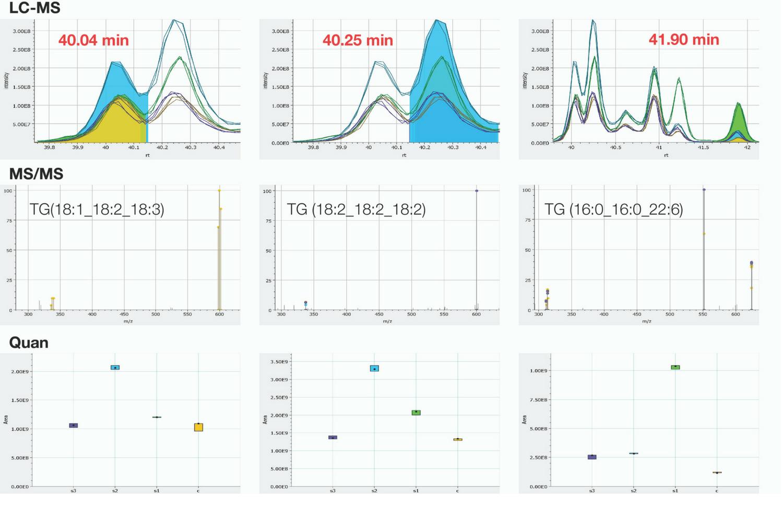 Figure 1. Simultaneous identification and relative quantitation of 54:6 Triacylglyceride lipids from human serum/plasma.