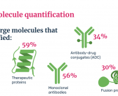 Large molecule quantification by LC–MS infographic