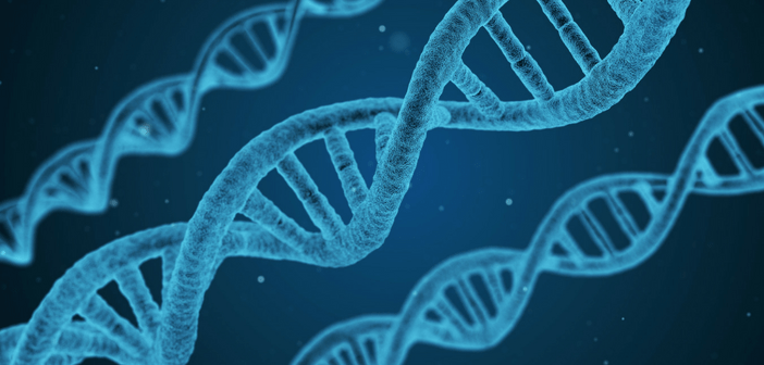 Gene therapy: an interview with Hugh Davis