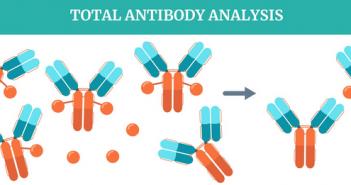 Antibody-drug