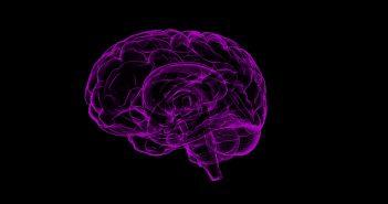 brain-tumor-diagnostic-tool