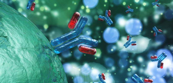 ADA-assay-antibodies